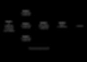 Comp Diagram-01.png