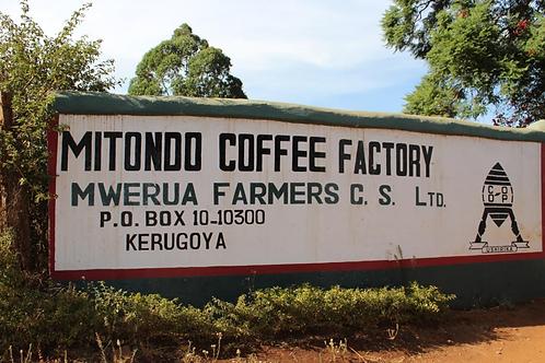 ケニア Mitondo Coffee Factory, Kirinyaga, SL28他, washed, フィルターロースト 105g~