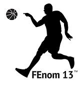 fenom13.png