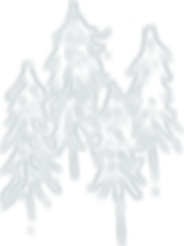 trees_w.png