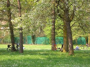 il parco del crostolo
