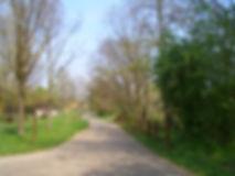 percorso ciclabile vicino all'affittacamere e agli appartamenti