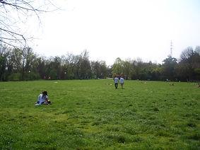 la distesa verde raggiungibile dal residence e affittacamere, a reggio emilia
