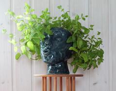 Tove 2020  Ceramic pot   Clay, glazing, engobe
