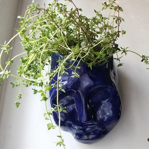 Silvia 2020  Ceramic pot for wall  Clay, glazing