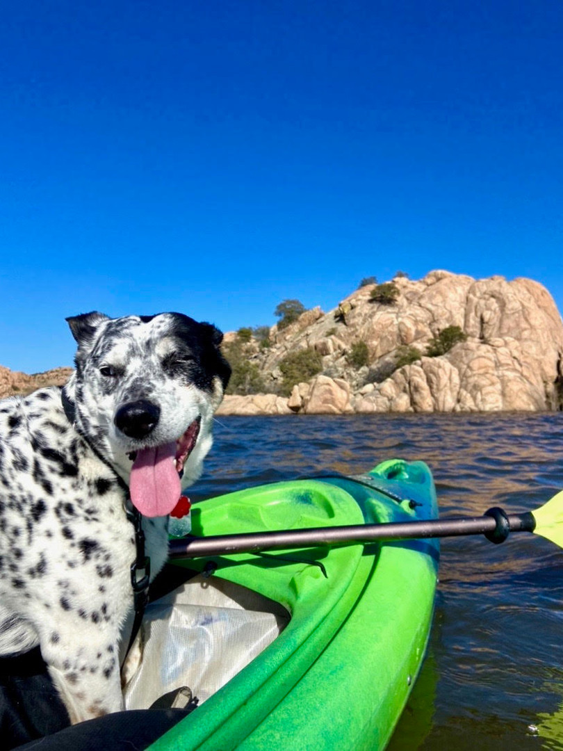 Dog Friendly Kayaking!