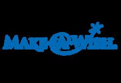 Make-A-Wish_icon-vector-blue_119_logo_312x214
