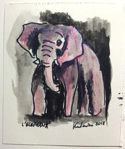 L'éléphant rose