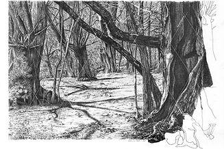 Notre forêt, hommage à mon père - 61x40cm _ 2020