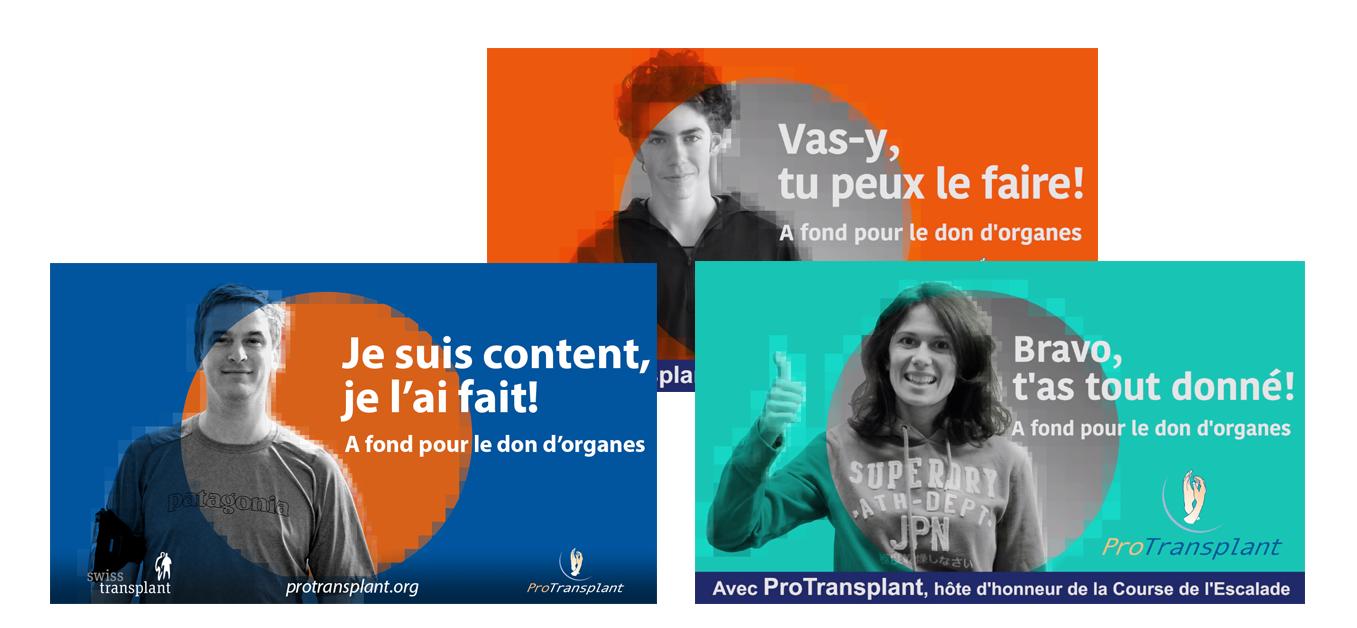 Protransplant