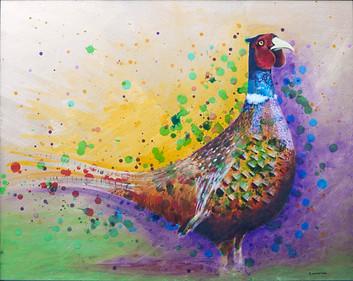 steph_norman_artist_pheasant.jpg