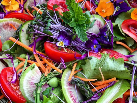 Elevate Your Life.... with Salad!