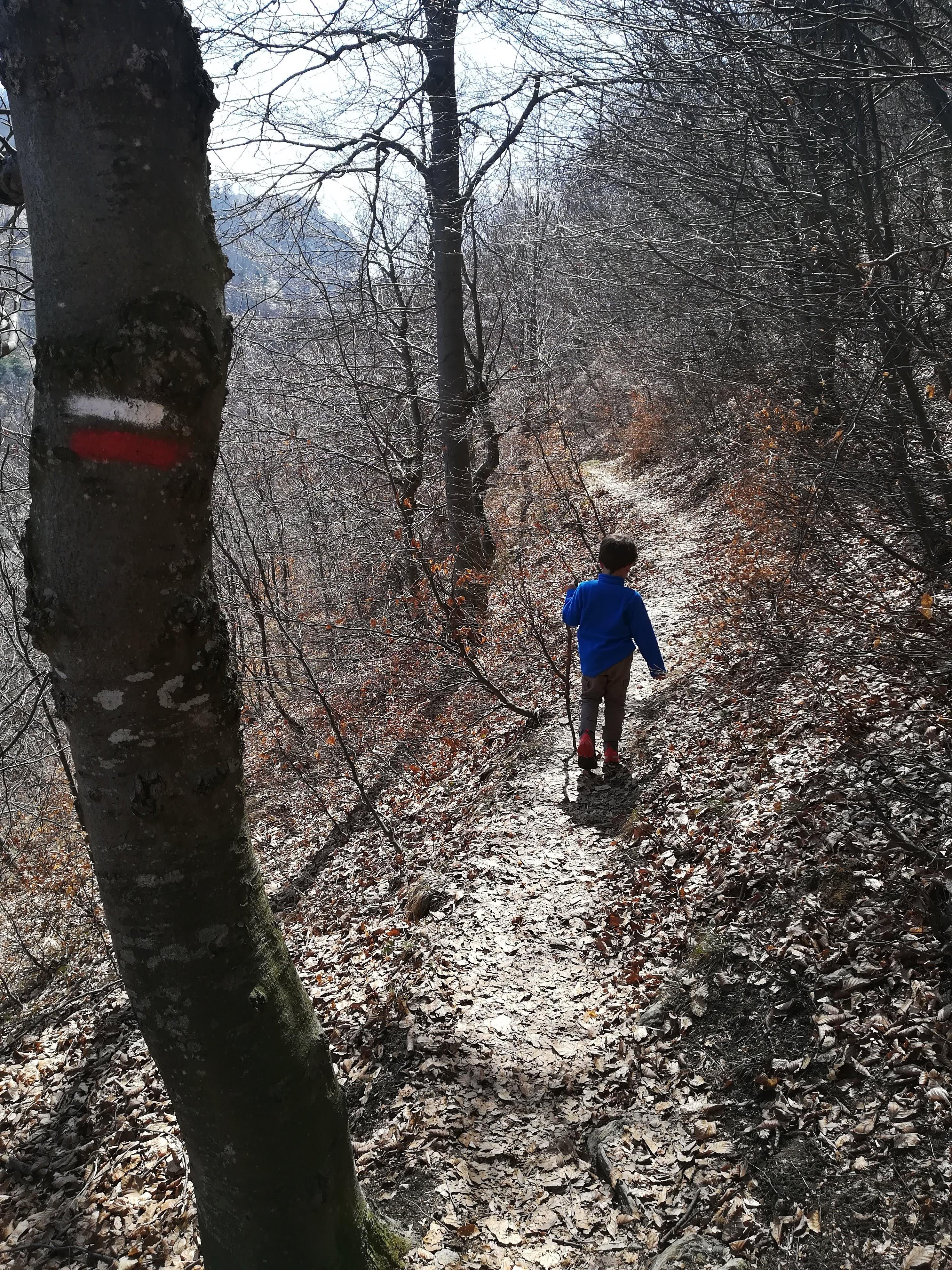 path to Freidour