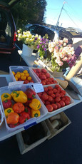 farmers market 2.jpg