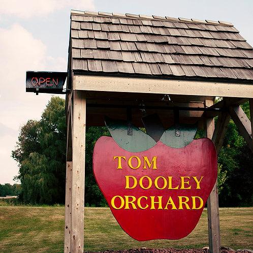 Tom Dooley's Apple Orchard