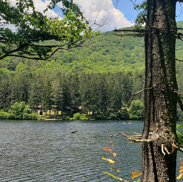 Lake Logan, NC-215 Canton