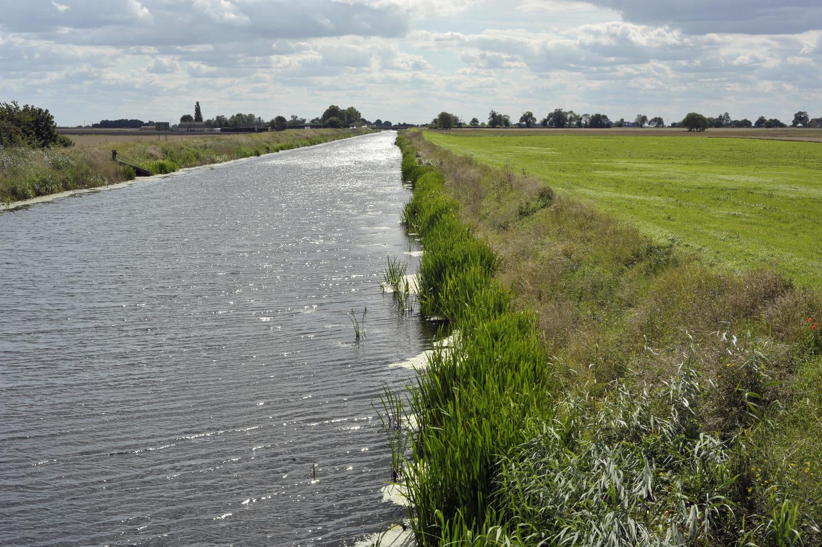 Fenlands River bank