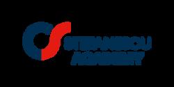 Stefanescu Academy - Logo