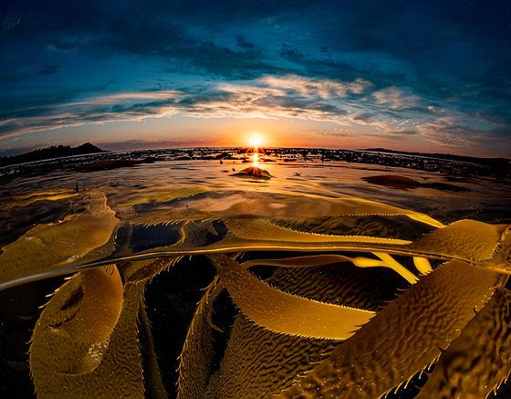 sunset booyah-1-2.jpg