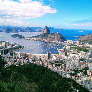 Tropical Forest and the City of Rio