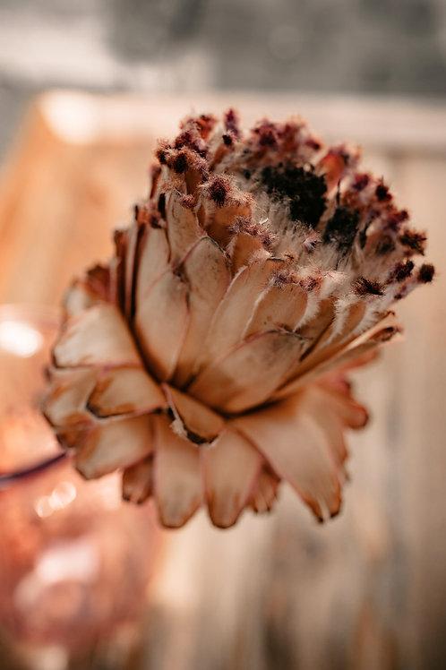 Blumendreierlei