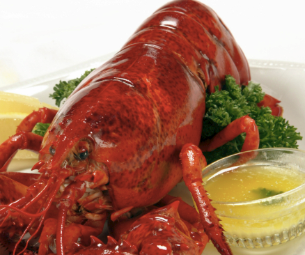 Best Maine Lobster in Bethesda?  Chef Tonys