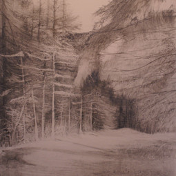 Waldstück_1_Grafit.jpg
