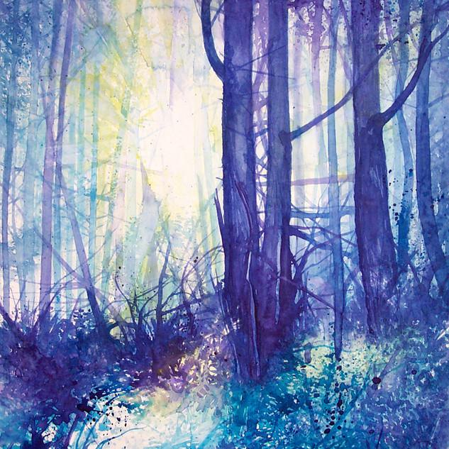 Im Wald .jpg