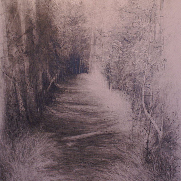 Waldstück_2_-_Grafit.jpg