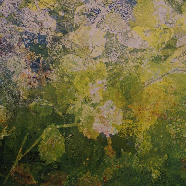 Vegetation 6 .jpg
