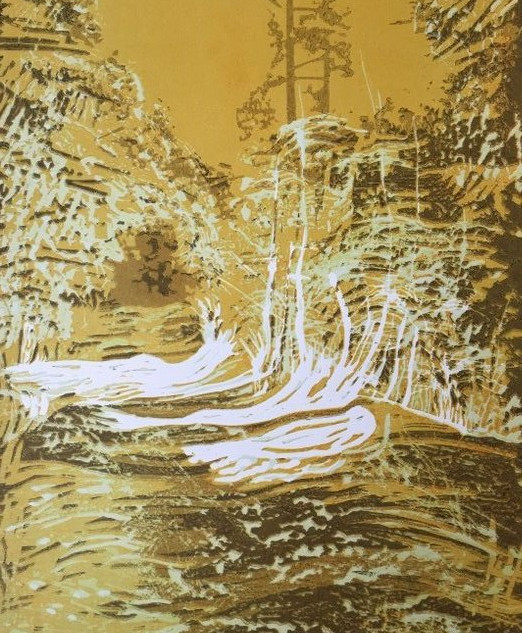 Waldstück_1.jpg