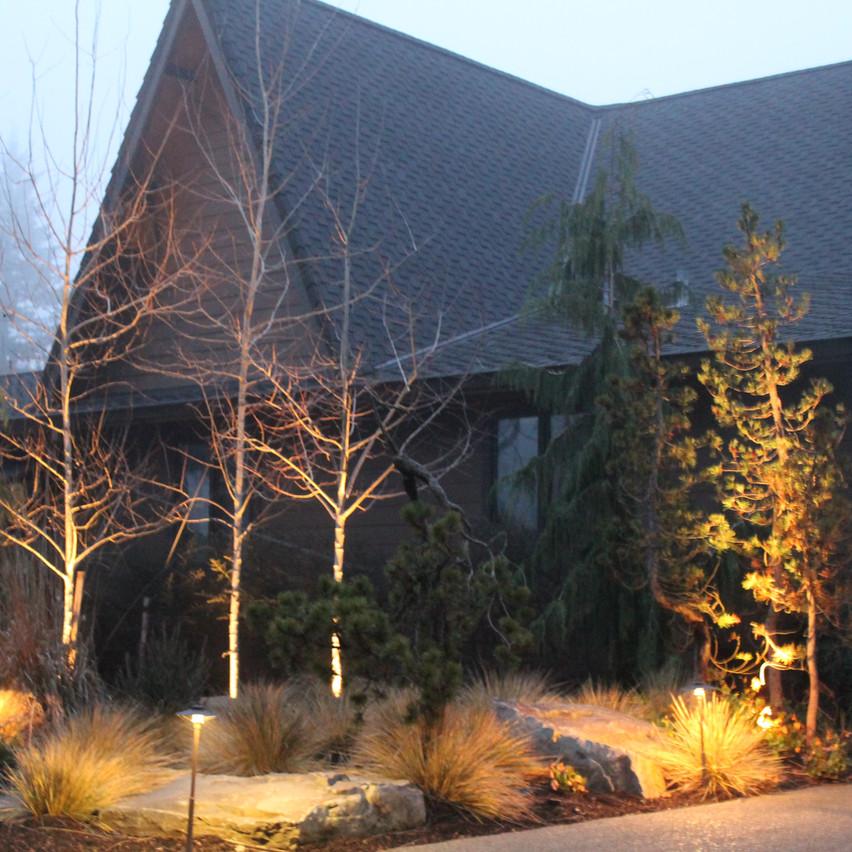 Lighting, On Landscaping 2.JPG