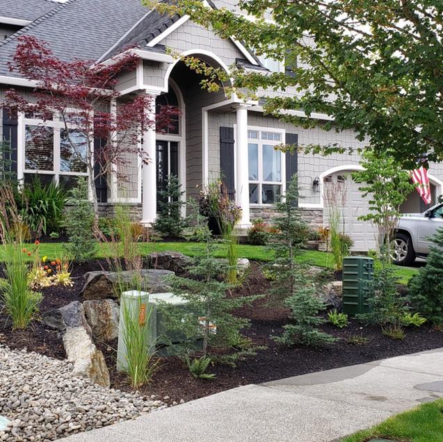 Landscaping, Front Yard.jpg