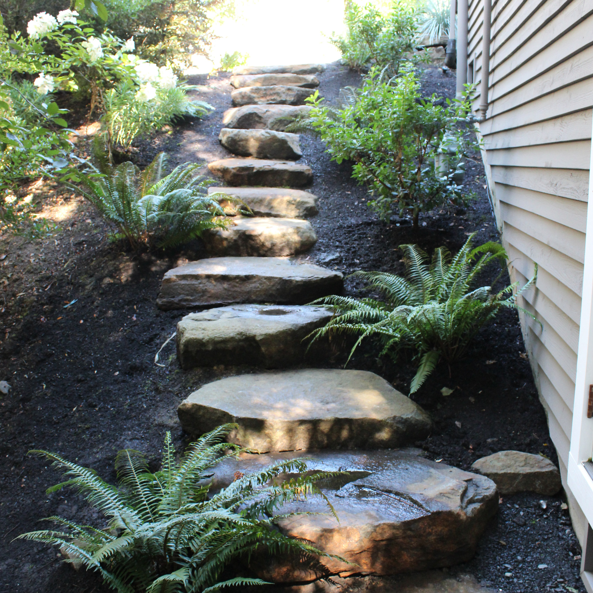 Steps, Slab Rocks.JPG