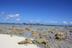 Segeltörn Karibik