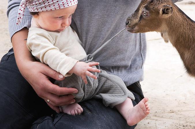 Human & Animal Health