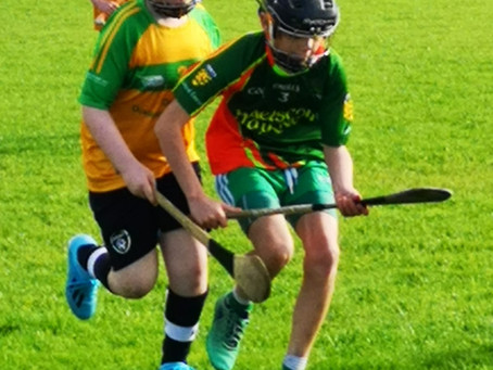 Cumann na mBunscoil Hurling Competition