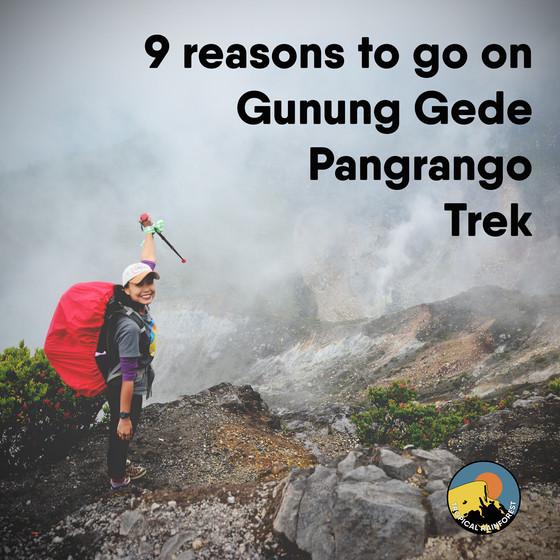 9 Reasons to go on Gunung Gede Pangrango Trek.