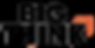 BigThink-edit copy-2.png