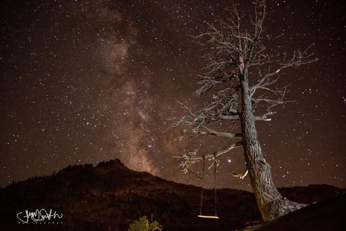 Tree Swing overlooking Donner Lake