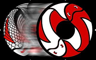 logo-koiaikidojo-transicion1.png