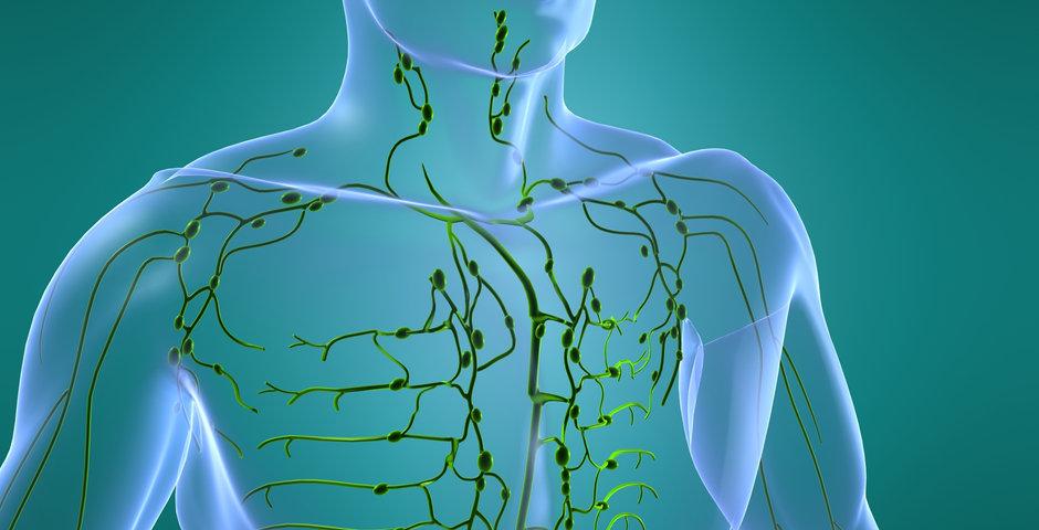 lymphatic system.jpg