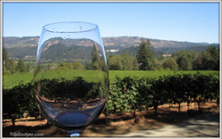 Frias-Family-Vineyard1