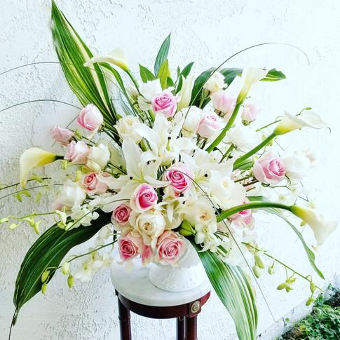 Premium white and pink