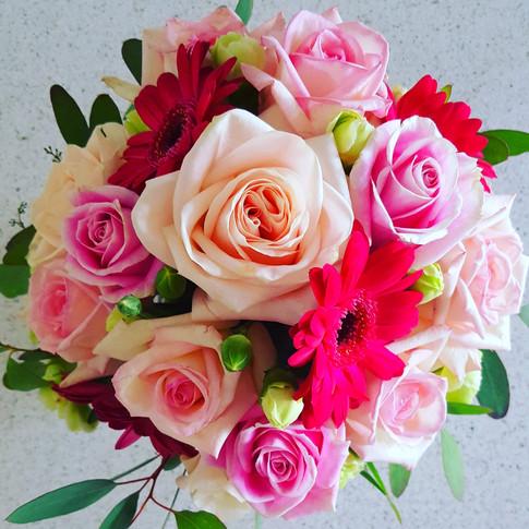 Pink and fuchsia