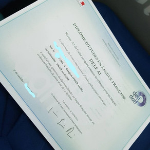 Review : DELF Examen A1 (French Proficiency Test) 🇫🇷