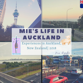 Review: NZLC Auckland, New Zealand by Mie Dyasha 🇳🇿
