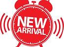 New Arrival_2.jpg