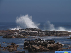 0022084 - Special places - Cape Town, The cape of Good Hope.jpg