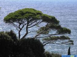 0020723 - LOCATION - EUROPE - ITALY, Portofino.jpg